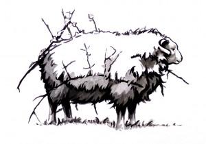Stick Sheep